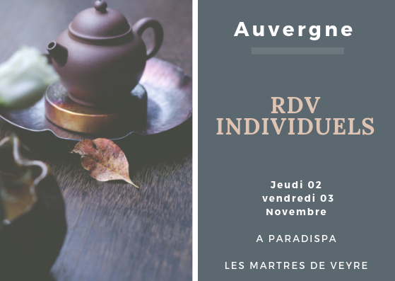 (Auvergne) 2 et 3 Novembre 2018 : Consultations individuelles